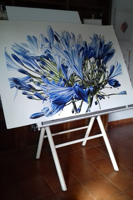 Botanical painting of an Agapanthus flower
