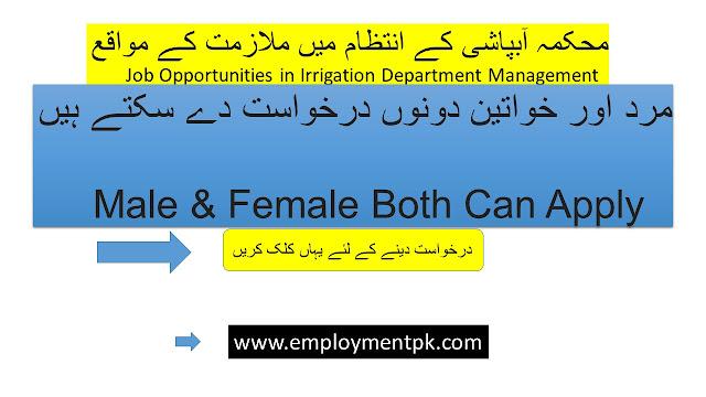 Latest-Irrigation-Department-Management-Posts-Swabi-2020