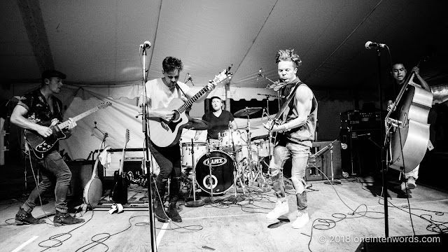Birds of Bellwoods at Hillside 2018 on July 15, 2018 Photo by John Ordean at One In Ten Words oneintenwords.com toronto indie alternative live music blog concert photography pictures photos