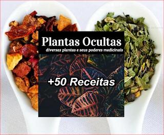 Plantas ocultas mais 50 receitas para fazer
