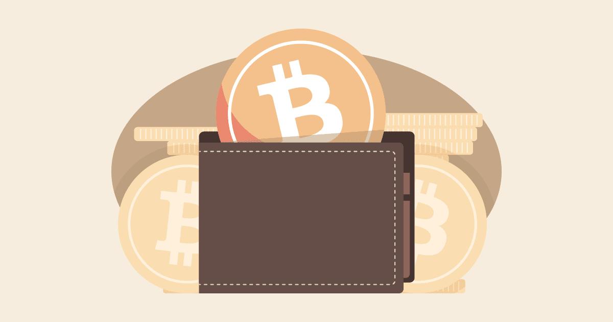 Jenis Jenis Wallet atau Dompet Cryptocurrency