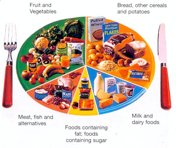 Jayavel Chakravarthy Srinivasan\u0027s Blog Calorie Count chart For food