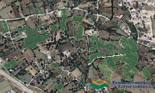 Aπλοποιείται σημαντικά η διαδικασία έκδοσης οικοδομικών αδειών στις περιοχές εκτός σχεδίου πόλεως και εκτός οικισμών για τις οποίες έχουν αναρτηθεί οι δασικοί χάρτες, όπως αναφέρεται σε σχετική εγκύκλιο του υπουργού Περιβάλλοντος και Ενέργειας, Κώστα Σκρέκα και των υφυπουργών, Νίκου Ταγαρά και Γιώργου Αμυρά.