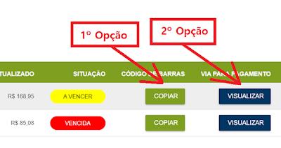 Imagem das Opções para tirar a 2 Via Amazonas energia