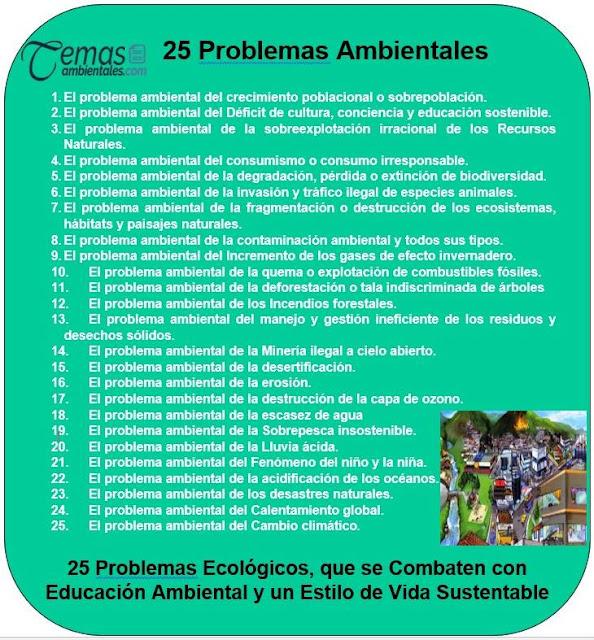 25 Problemas Ambientales