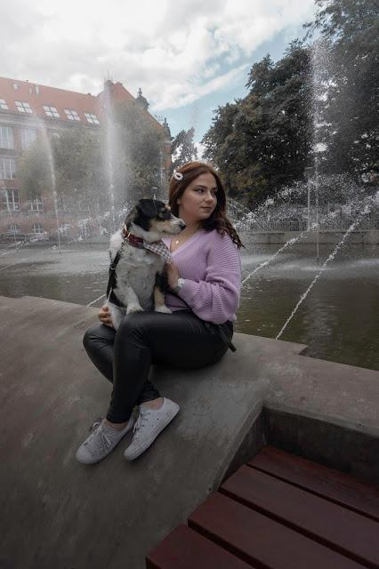 Adoptowany kundel droższy niż rasowy pies.