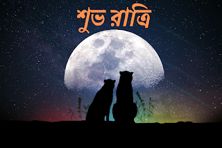 bengali good night images download