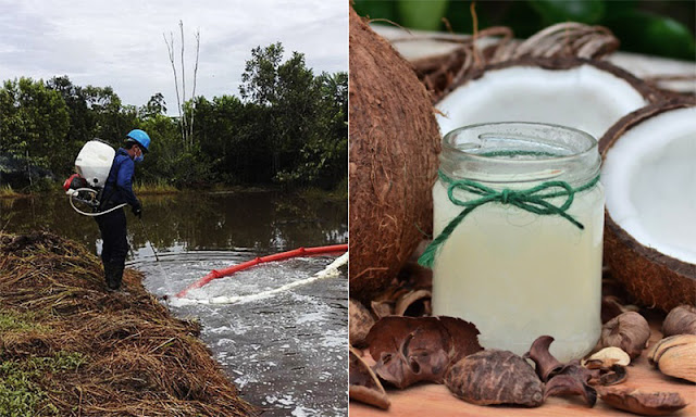 ingeniero-colombiano-crea-surfactante-natural-limpia-derrames-petroleo