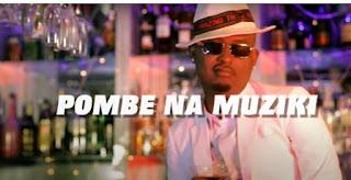 DOWNLOAD VIDEO | Mr Blue Ft Steve Rnb – Pombe Na Muziki  MP4