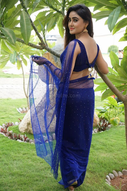 Actress Sony Charishta Very Hot in Blue Saree Photo Collection