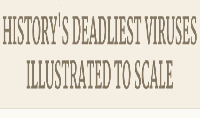History's Deadliest Viruses Illustrated to Scale #infographic