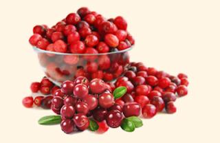 Buah Cranberry - Blog Mas Hendra