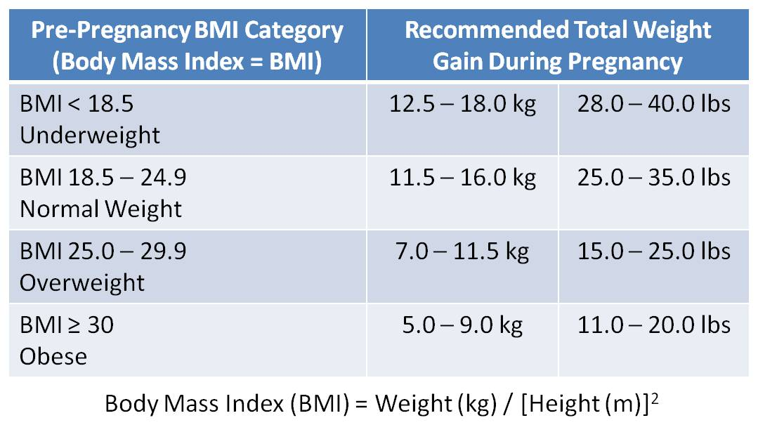 Best Weight Gain During Pregnancy Calculator Uk Image Collection