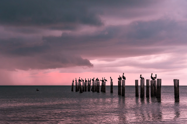 Sunset at Old Pilings Naples