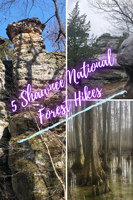 5 Shawnee National Forest Hikes Lifting the Soul Exploring Unique Ecosystems in Southern Illinois