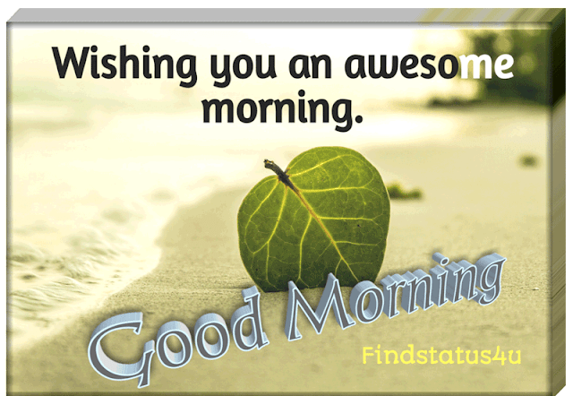 Good Morning Images 3D Full HD for Whatsapp free Download