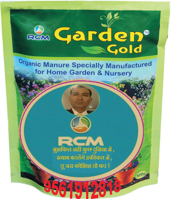 Information of RCM Garden Gold