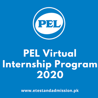 pel virtual internship program 2020