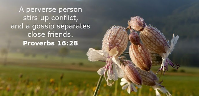 A perverse person stirs up conflict, and a gossip separates close friends.