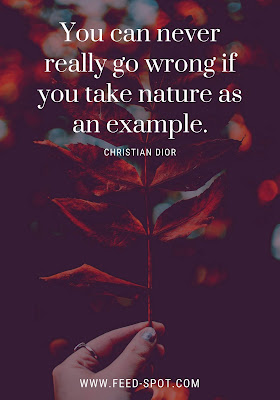 You can never really go wrong if you take nature as an example. __ Christian Dior