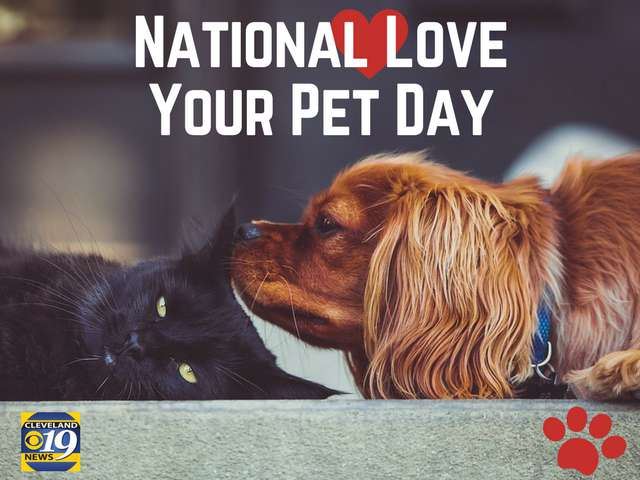 National Love Your Pet Day Wishes Images download