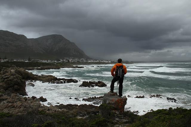 VER PINGUINS e BALEIAS na África do Sul - Se as baleias se escondem, exibem-se os pinguins | África do Sul
