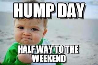 good morning hump day memes
