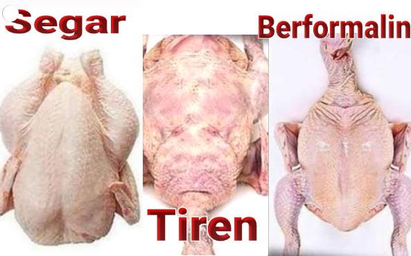 Tips Untuk Ibu-ibu - Cara Memilih Daging Ayam Di Pasar