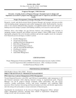 Technical Program Manager Resume Examples