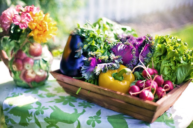Benefits of Having a Vegetable Garden