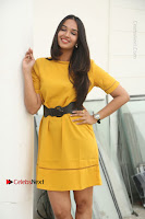 Actress Poojitha Stills in Yellow Short Dress at Darshakudu Movie Teaser Launch .COM 0148.JPG