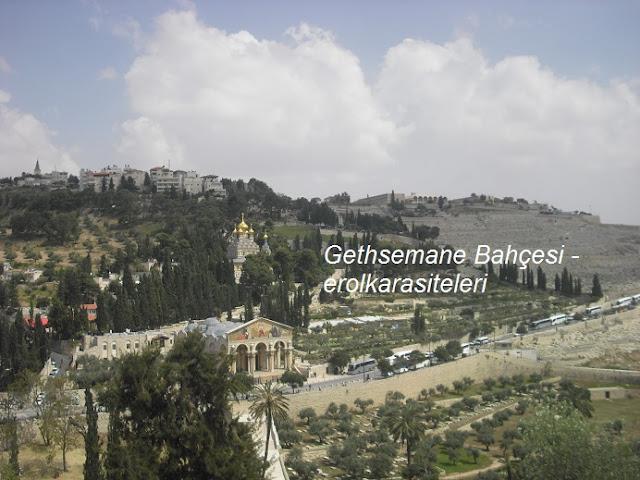 Gethsemane Bahçesi
