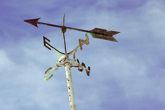 نظرية المسار نحو الهدف - بيزنس بالمصرى