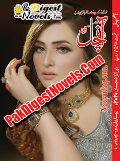 Aanchal Digest December 2020 Pdf Download