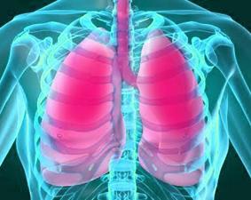 cara-alami-menjaga-kesehatan-paru-paru-dengan-makanan-sehat