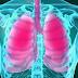 cara alami menjaga kesehatan paru-paru dengan makanan sehat