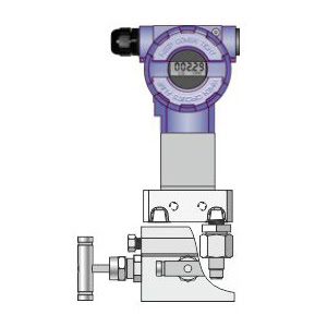 Differential Pressure Transmitter DPR-2000G Delta Mobrey