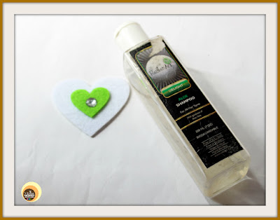 RUSTIC ART DELIGHT BIODEGRADABLE ALOE SHAMPOO REVIEW on Natural Beauty And Makeup
