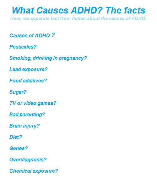 Heres What We Know About Causes Of >> The Solution For You What Causes Adhd 12 Myths And Facts
