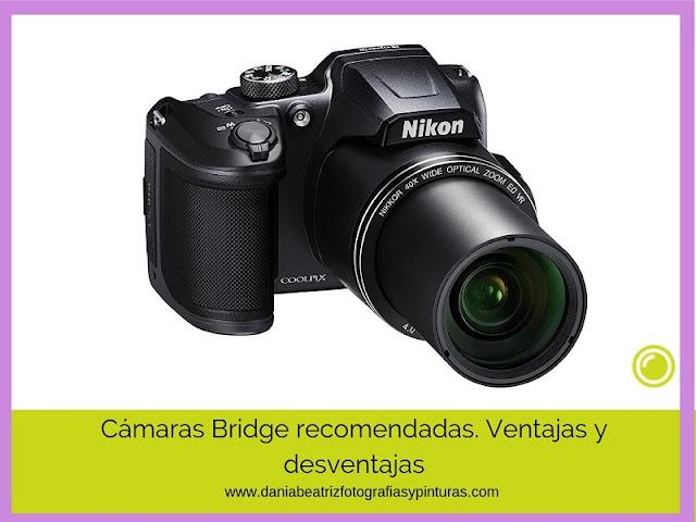 camara-bridge-blog-de-fotografia-para-aficionados