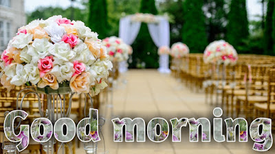new latest good morning images for free download for WhatsApp Facebook share chat hello