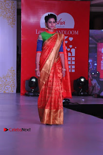 South Indian Celebrities Pos at Love For Handloom Collection Fashion Show  0065.jpg