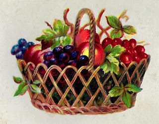 fruit grapes peaches basket image botanical artwork illustration