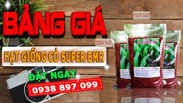 Giống cỏ Super BMR- cao lương họ ngô