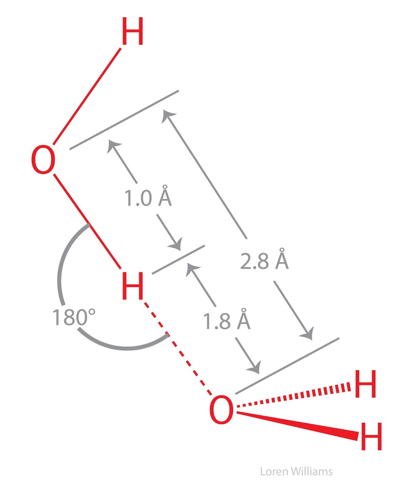 Savvy Chemist Intermolecular Forces 3 Hydrogen Bonding