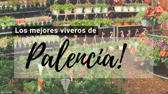Comprar Plantas online en Palencia, España