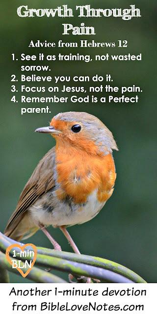 Hebrews 12, Hardship produces perseverance