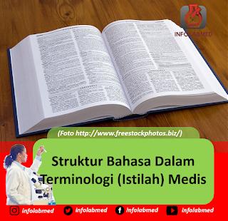 Struktur Bahasa Dalam Terminologi (Istilah) Medis