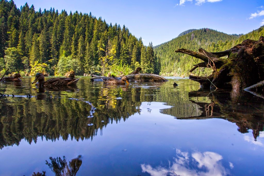 Pro Turismo Terrae Siculorum Szövetség, turizmus, Székelyföld, faluturizmus, Gyilkos-tó