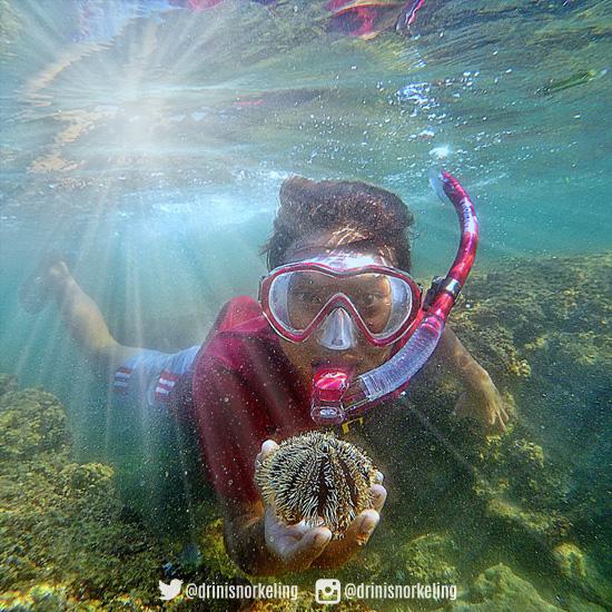 wisata snorkeling gunungkidul
